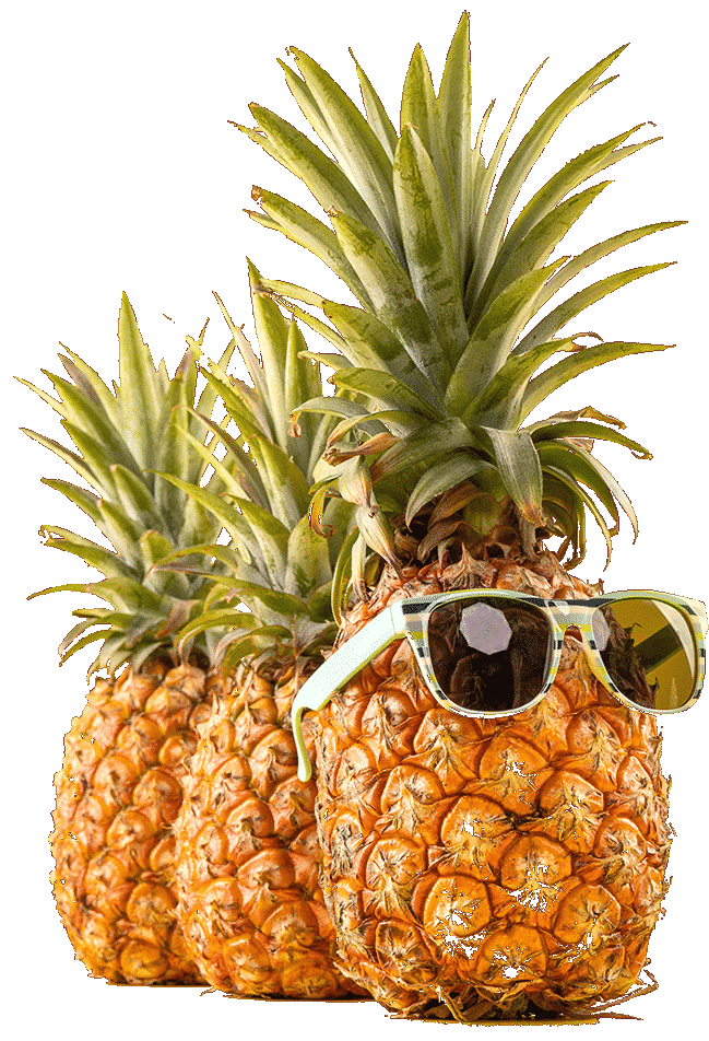 Pineapple-cropped